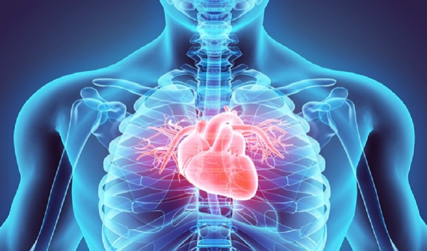 How to figure out the best doctor for cardiology and cardiac surgery?